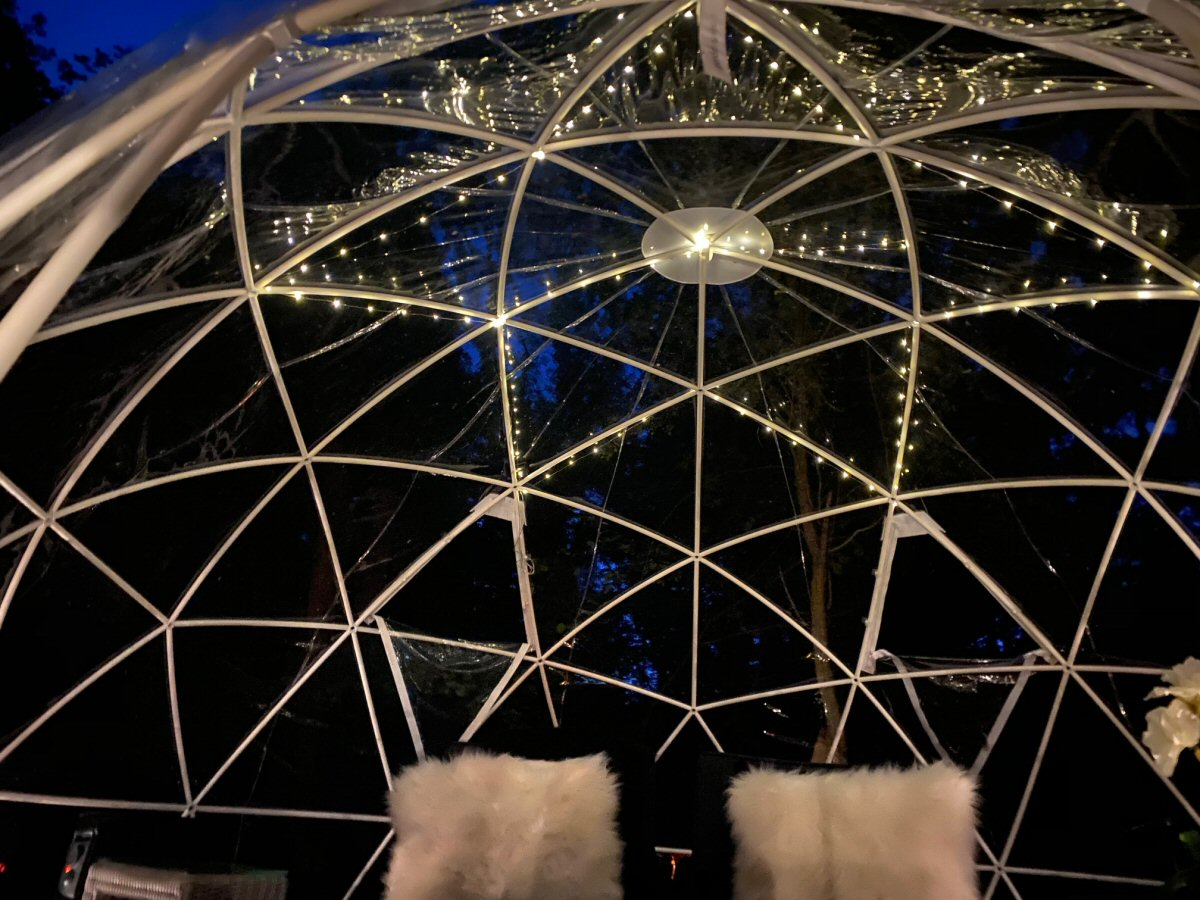 The geodesic dome 2